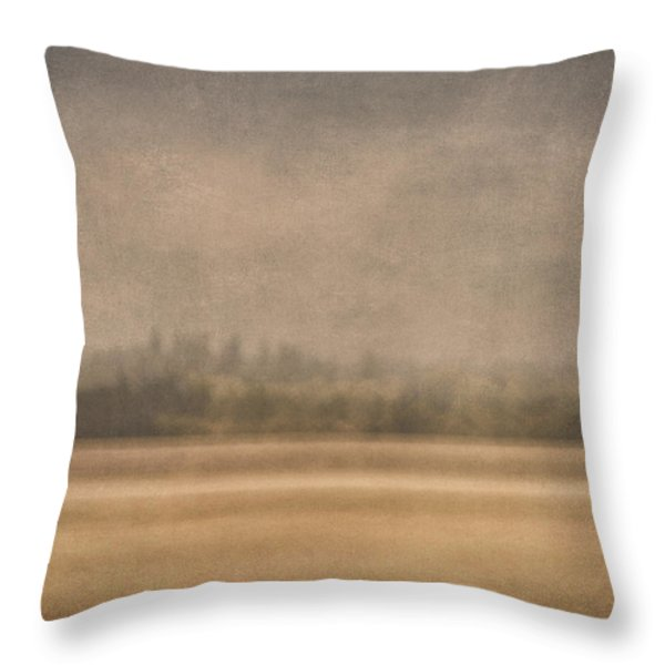 Oregon Rain Throw Pillow by Carol Leigh