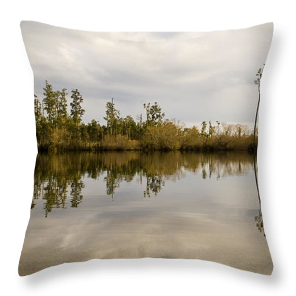 Perfect Lake Throw Pillow by Tim Hester