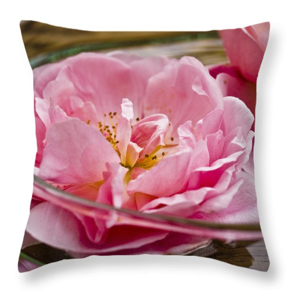 Pink Roses Throw Pillow by Frank Tschakert