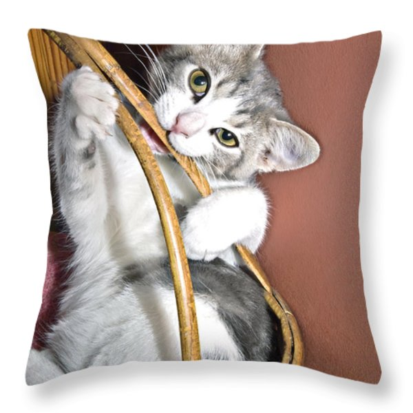 Playful Kitten Throw Pillow by Susan Leggett