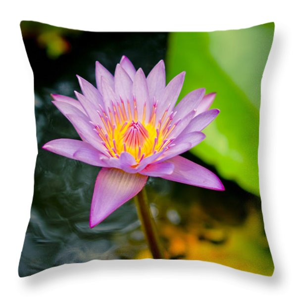 Purple lotus  Throw Pillow by Raimond Klavins