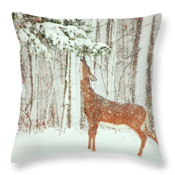 Reach For It Throw Pillow by Karol  Livote