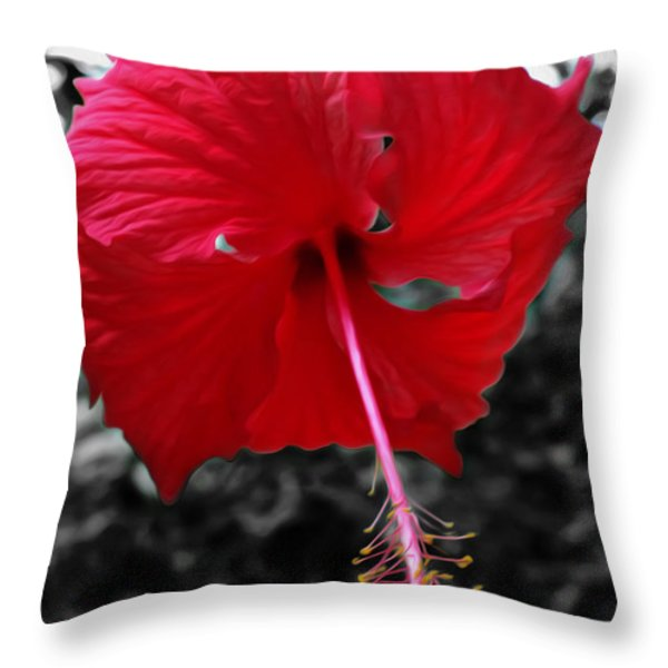 Red Hibiscus Throw Pillow by Cheryl Young