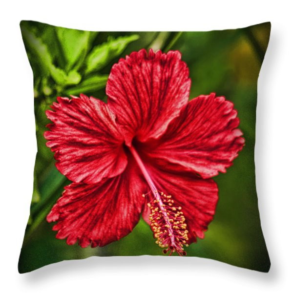 Red Hibiscus Throw Pillow by Wendy Townrow