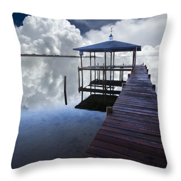 Reflections Throw Pillow by Debra and Dave Vanderlaan