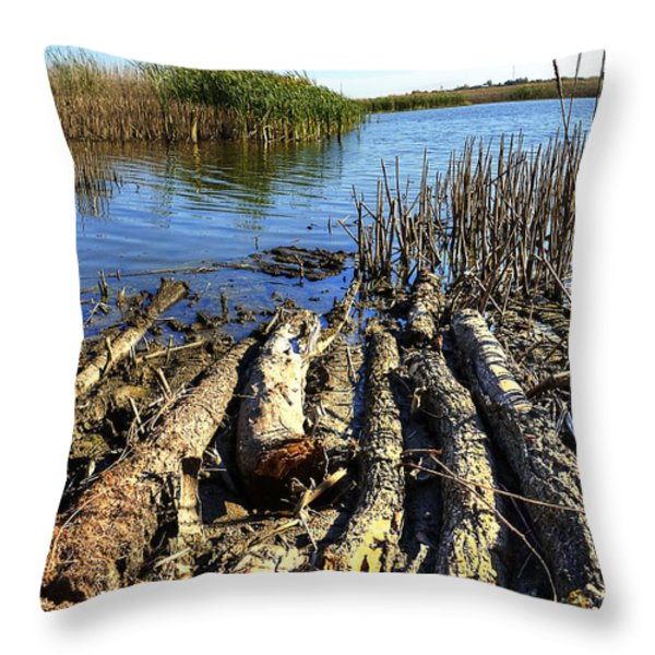Riverside Throw Pillow by Svetlana Sewell