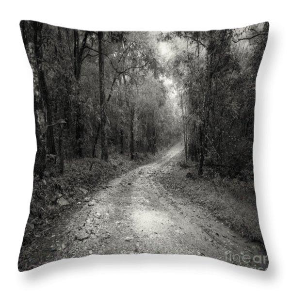 Road Way In Deep Forest Throw Pillow by Setsiri Silapasuwanchai