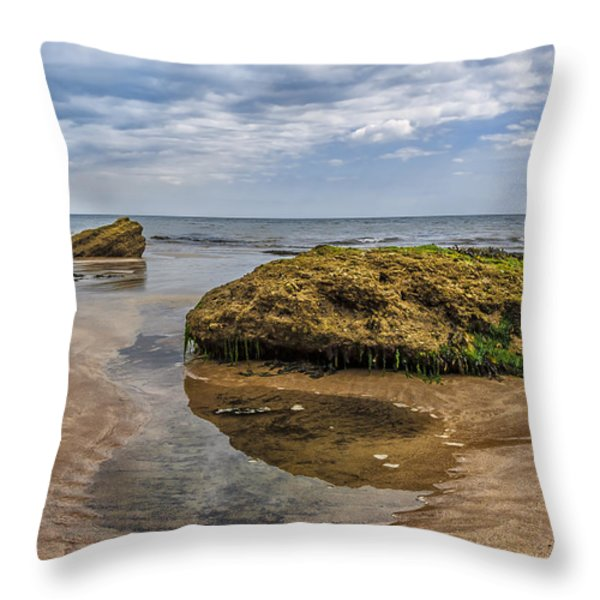 Rock Throw Pillow by Svetlana Sewell