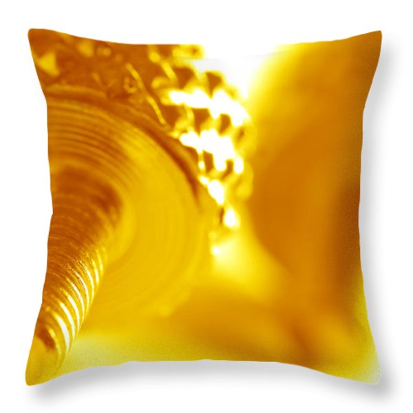 Screw Throw Pillow by Michal Bednarek