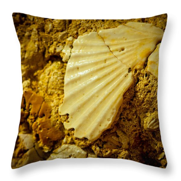 Seashell In Stone Throw Pillow by Raimond Klavins