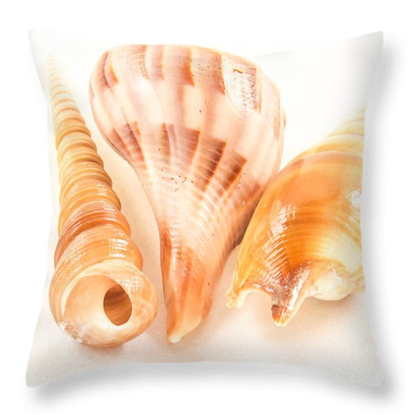 Shell Trio Throw Pillow by Jean Noren
