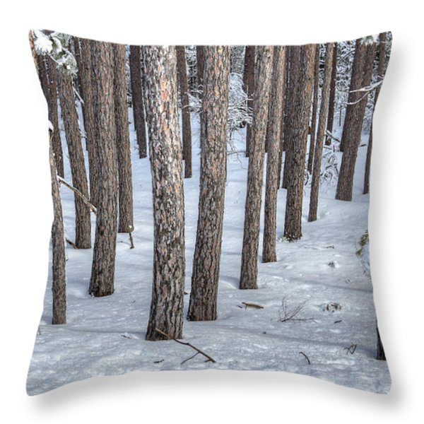Snowy Woods Throw Pillow by Donna Doherty