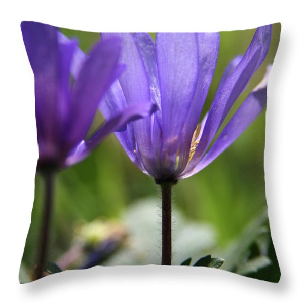 Soft Light  Throw Pillow by Neal  Eslinger