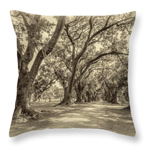 The Lane sepia Throw Pillow by Steve Harrington