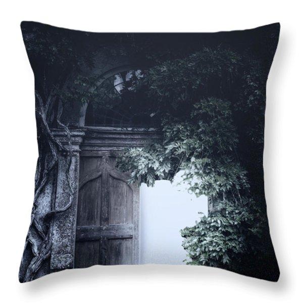 The Light Throw Pillow by Joana Kruse