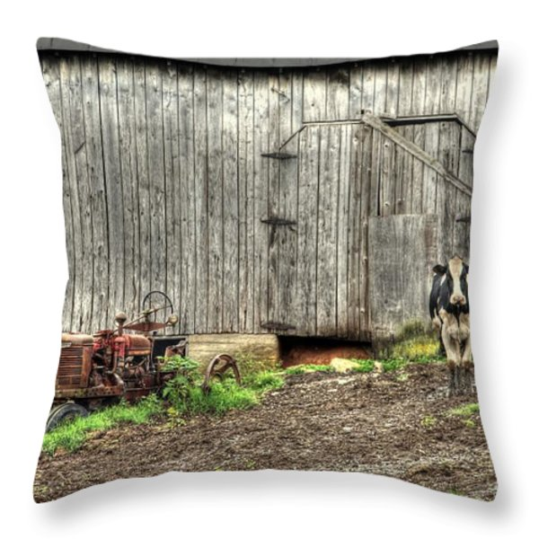 The Poser Throw Pillow by Benanne Stiens