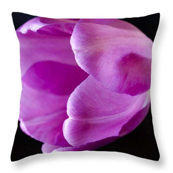 The Very Pink Of Perfection Throw Pillow by Christi Kraft