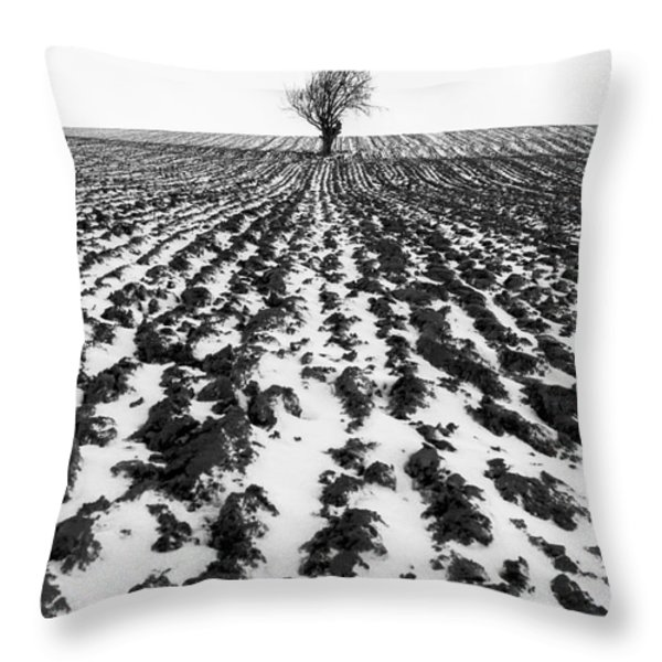 Tree in snow Throw Pillow by John Farnan