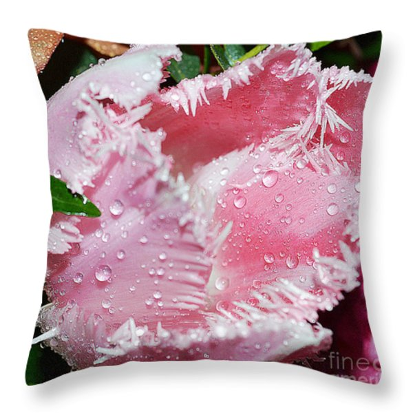 Tulip lace Throw Pillow by Felicia Tica
