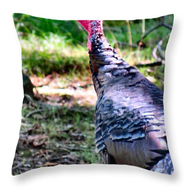 Turkey Lurkey Throw Pillow by Michelle Milano