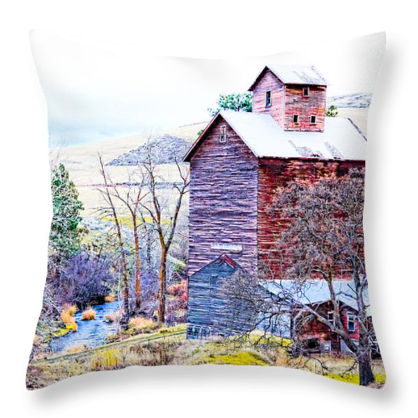 Vintage Barn Throw Pillow by Steve McKinzie