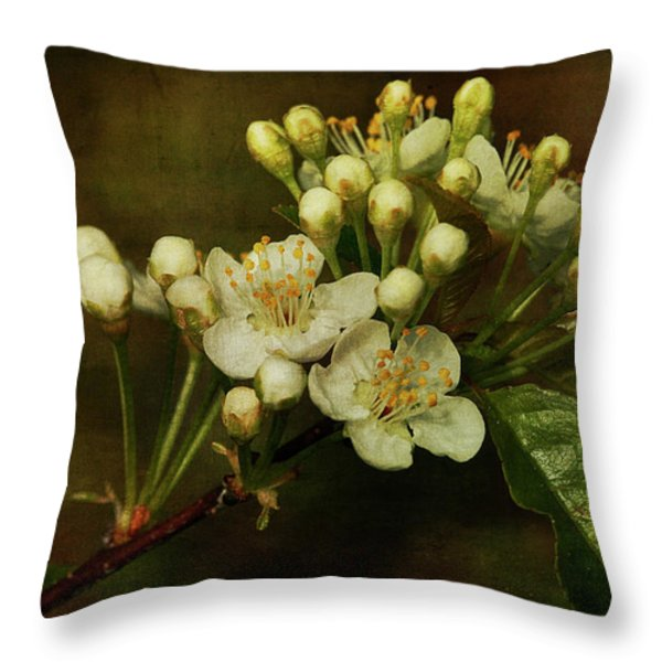 White Blossoms Throw Pillow by Cindi Ressler