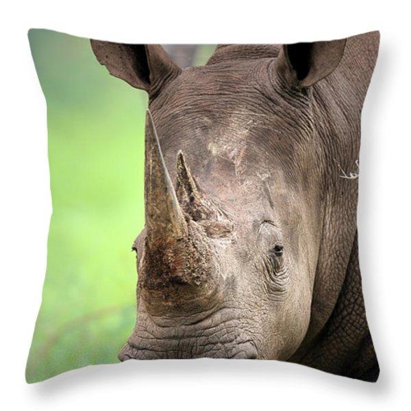 White Rhinoceros Throw Pillow by Johan Swanepoel