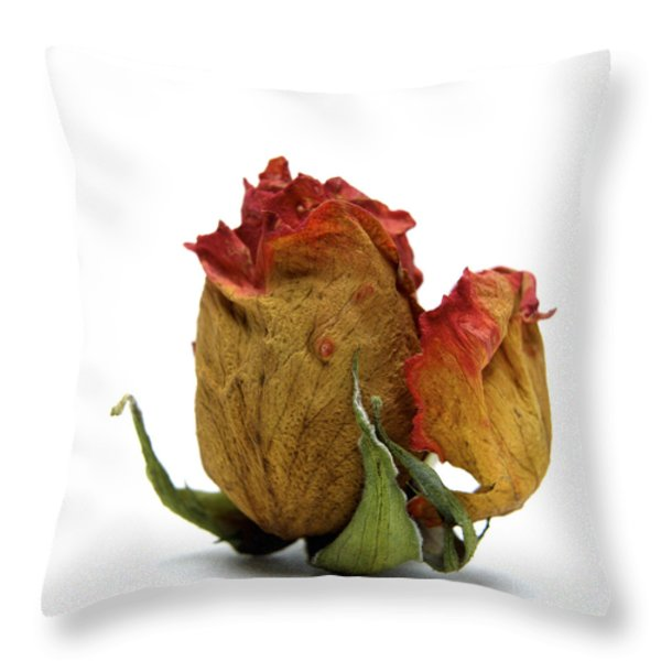 Wilted rose Throw Pillow by BERNARD JAUBERT