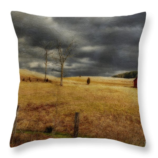 Winter Begins Throw Pillow by Lois Bryan