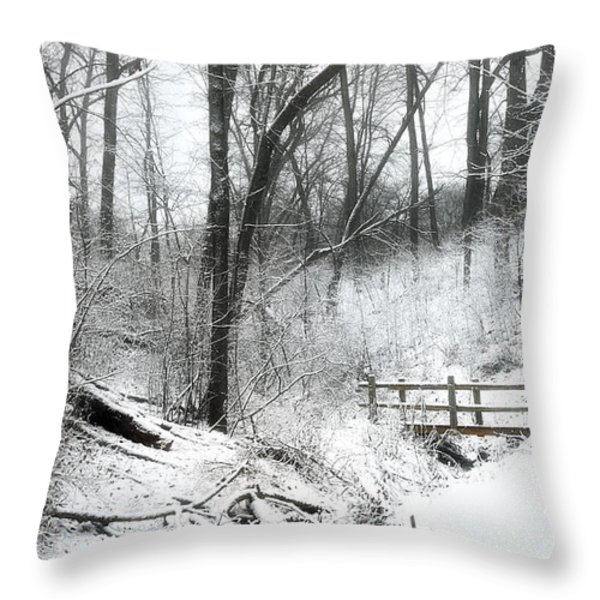 Winter Wonderland  Throw Pillow by Scott Norris