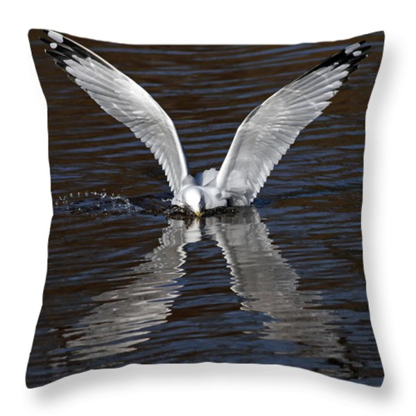 X Throw Pillow by Jim Nelson