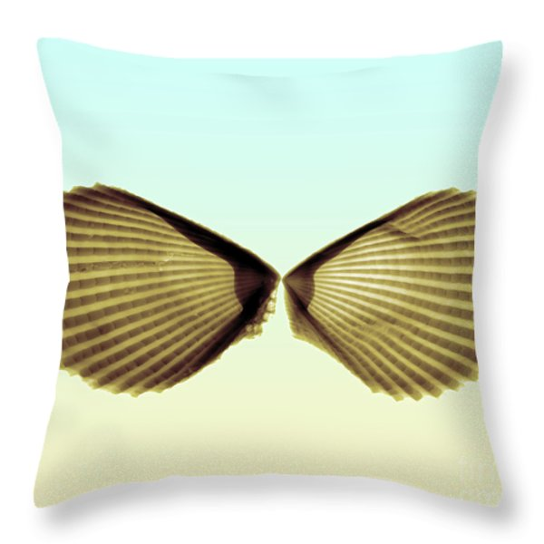 X-ray Of Angel Wing Shells Throw Pillow by Bert Myers