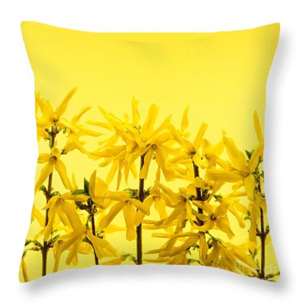 Yellow Forsythia Flowers Throw Pillow by Elena Elisseeva