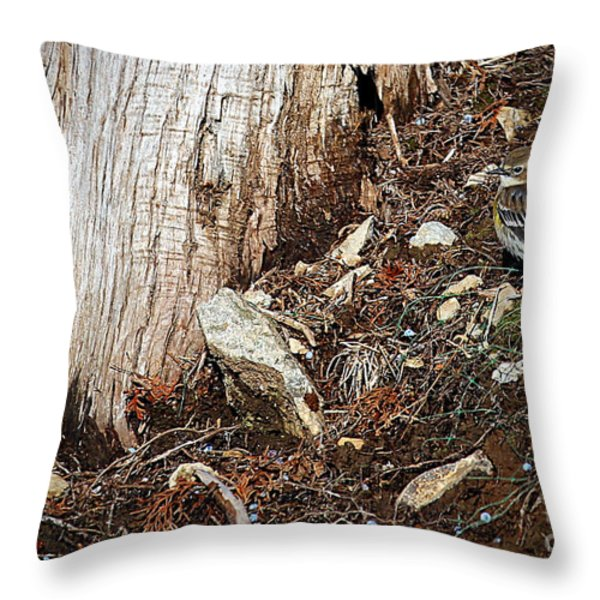 Yellow-rumped Warbler Throw Pillow by Elizabeth Winter