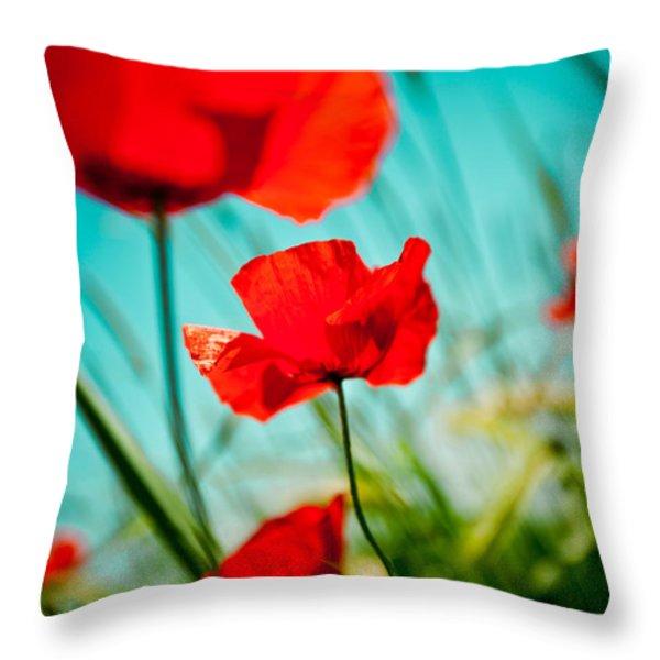 Poppy field and sky Throw Pillow by Raimond Klavins
