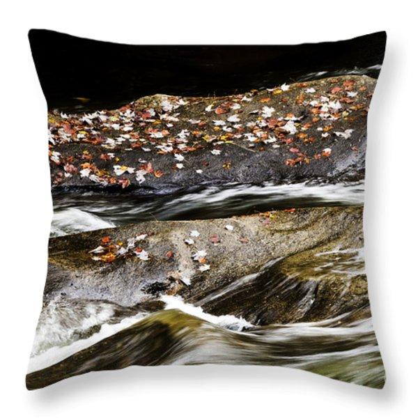 Williams River Autumn Throw Pillow by Thomas R Fletcher