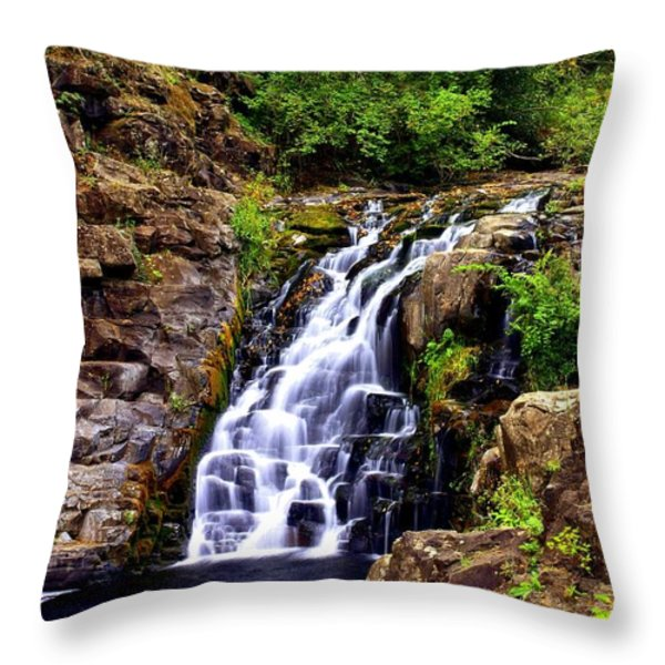 12314 Throw Pillow by Marty Koch