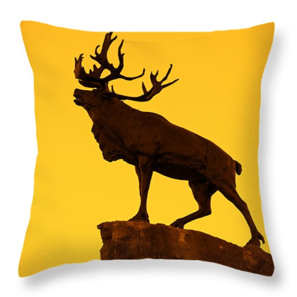 130918p143 Throw Pillow by Arterra Picture Library