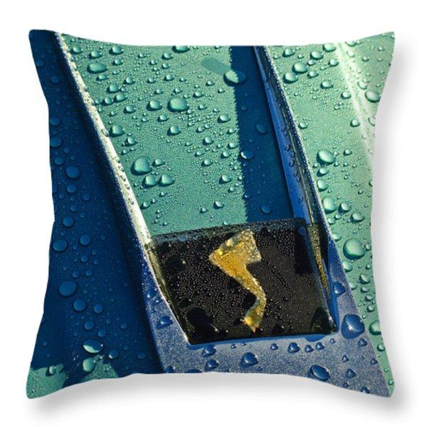 1963 Studebaker Avanti Hood Ornament Throw Pillow by Jill Reger