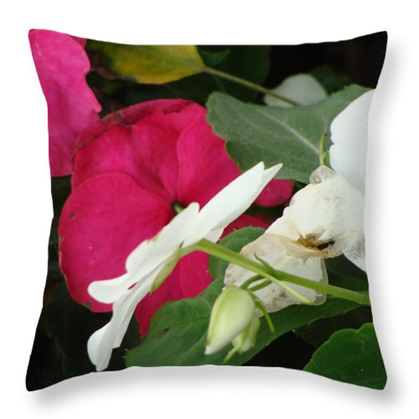 A Quiet Place Throw Pillow by Ira Shander