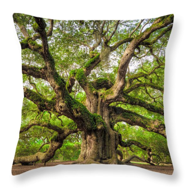 Angel Oak Tree Of Life Throw Pillow by Dustin K Ryan
