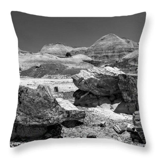 Arizona Petrified Forest National Park Throw Pillow by  Bob and Nadine Johnston