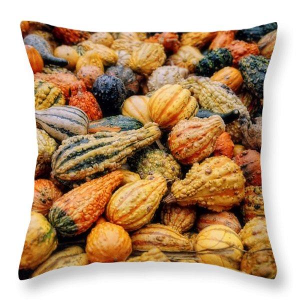 Autumn Gourds Throw Pillow by Joann Vitali
