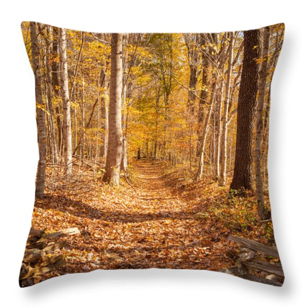 Autumn Trail Throw Pillow by Brian Jannsen