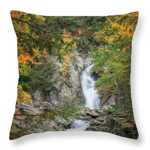 Bash Bish Falls Throw Pillow by Bill  Wakeley