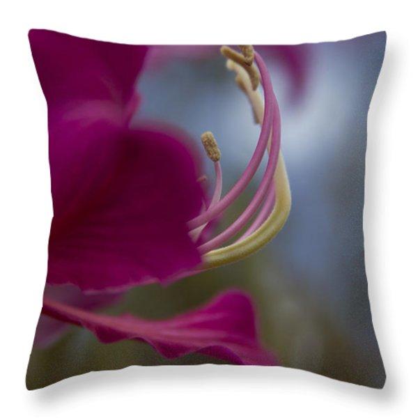 Bauhinia Blakeana - Hong Kong Orchid - Hawaiian Orchid Tree Throw Pillow by Sharon Mau