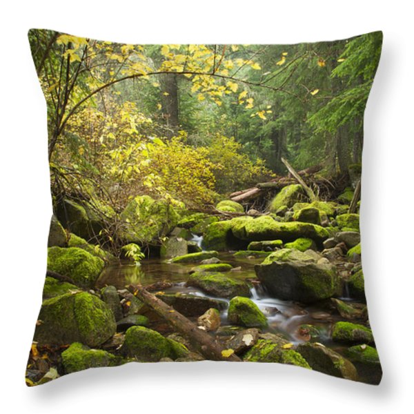 Beauty Creek Throw Pillow by Idaho Scenic Images Linda Lantzy