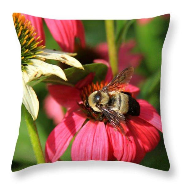 Bee Nice Throw Pillow by Reid Callaway
