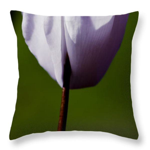 Before The Bloom Throw Pillow by David Patterson