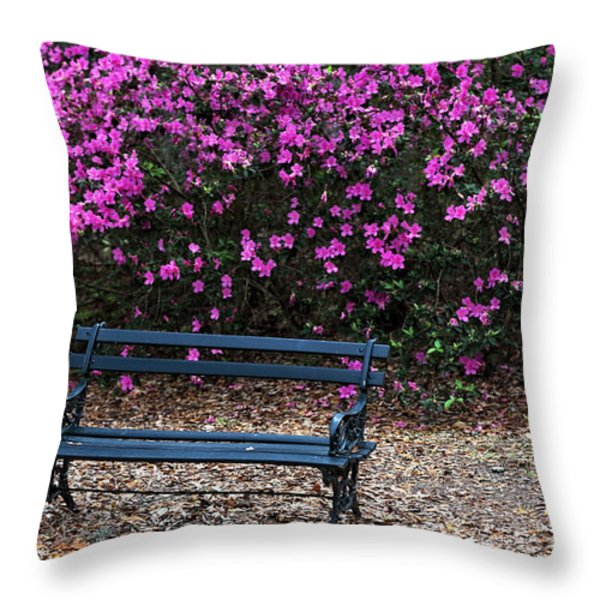 Throw Pillows On Clearance : Bench Prints Throw Pillows for Sale